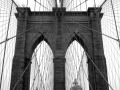 Andreas-Feininger-Brooklyns-Bridge