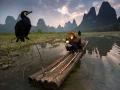 Кормушка для птиц, Китай